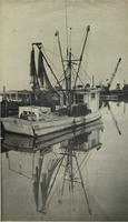 """""""CAROL-D"""" ON PENSACOLA BAY, DECEMBER 1978, FRONT"""