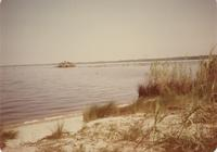 MILLVIEW IN PERDIDO BAY, 1974